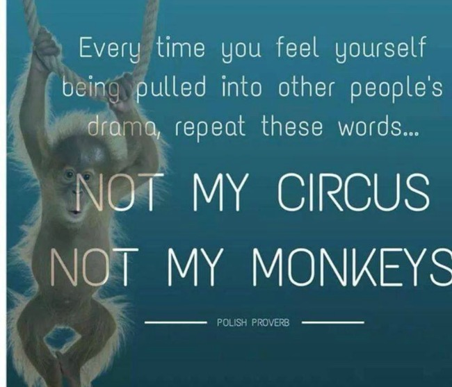 monkey and circus