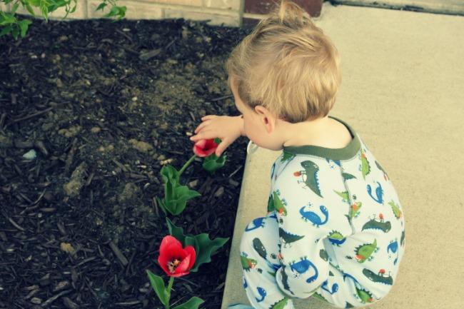 spencer picking tulips