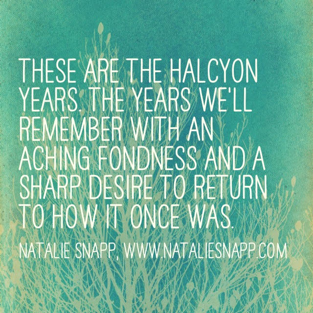 new halcyon years quote
